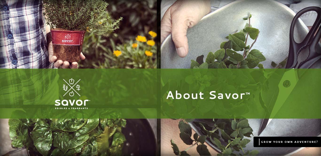 About Savor Edibles & Fragrants